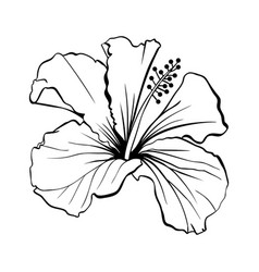 Hawaiian hibiscus outline laser cut vector