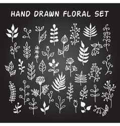 Set of hand-drawn floral elements with vector image