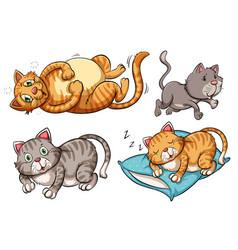 A set of cat character vector