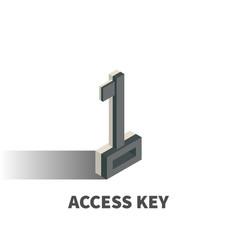 access key icon symbol vector image