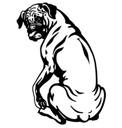 Boxer dog black white vector