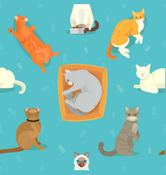 cat breeds cute kitty pet cartoon cute vector image