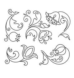 flowers set in doodle style vector image