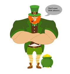 Leprkeon and gold Serious Powerful leprechaun vector