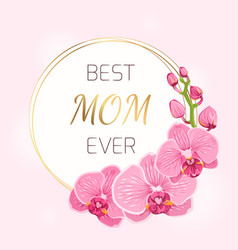 mothers day card pink orchid flowers wreath spring vector image
