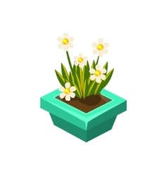 Pot With White Flowers Isometric Garden vector