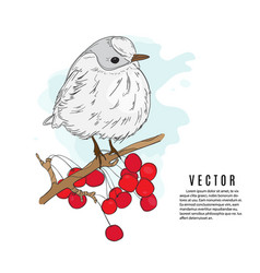 Small bird on a twig nature botanical sketch vector
