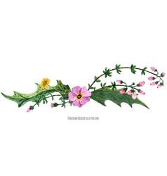 Vignette from wild plants of scotland vector
