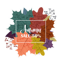 hello autumn sale text poster of september leaf vector image vector image