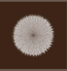Brown fluffy hair ball vector