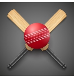 Cricket leather ball and vector