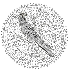 Parrot corella on the branch vector