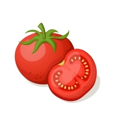 Tomatoes on a white background vector image vector image