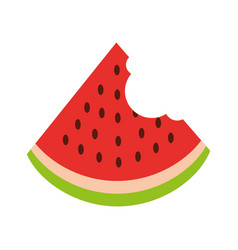 watermelon tropical and exotic fruit vector image