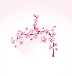 flat abstract blossom sakura branch icon vector image