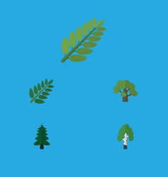 flat icon nature set of timber acacia leaf tree vector image