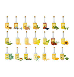 Glass bottles with oil set stylish container vector