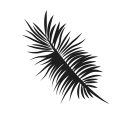 Palm tree leaf icon vector