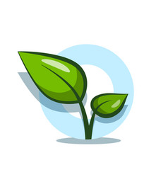 plant symbol with green leaves design isolated vector image
