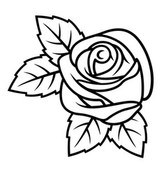 rose sketch 003 vector image