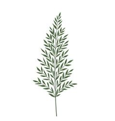 silhouette leaves fern vector image