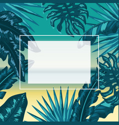 square frame with flowers plants style vector image