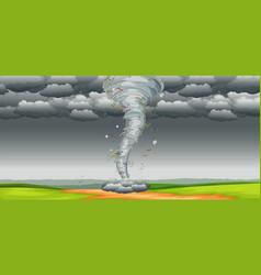a tornado in nature vector image