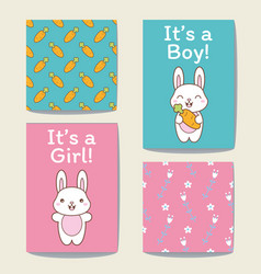 announcement cards set its a girl or a boy vector image