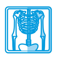 Blue shading silhouette with x-ray of bones vector