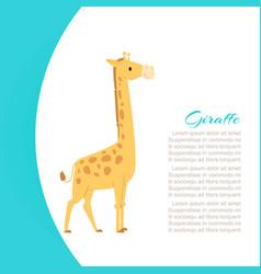 funny cartoon giraffe animal vector image
