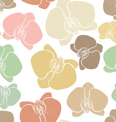 Orchids6 vector image vector image