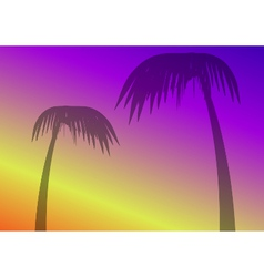 Palmtrees vector