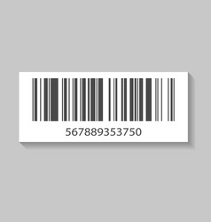 Realistic barcode isolated icon vector