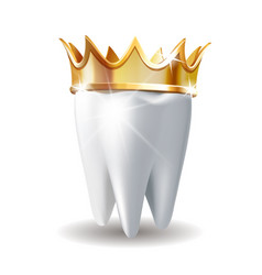 realistic white tooth in golden crown isolated on vector image