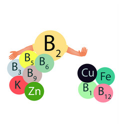 Vitamin b2 compatibility with other vitamins and vector