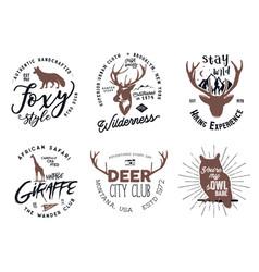 Wild animal badges set included giraffe owl fox vector