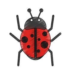 cute ladybug cartoon vector image vector image