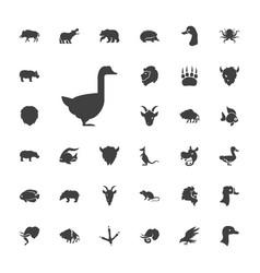 33 wild icons vector