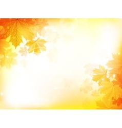 Autumn design background with leaves vector