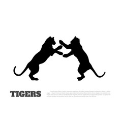 black silhouette fighting tigers vector image
