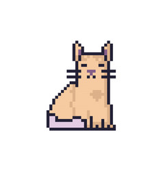 Cat pixel art vector