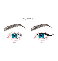 eye make up tutorial how to apply eyeliner vector image