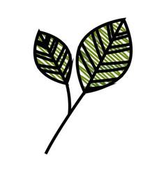leaf natural ecology vector image