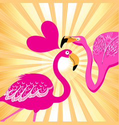 lovers flamingos on a sunny background vector image