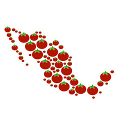 Mexico map collage of tomato vector