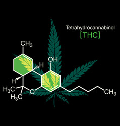 thc molecule on black vector image