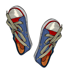 red and blue sports sneakers vector image