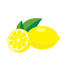 lemon with leaves vector image vector image