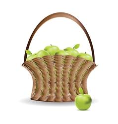 Basket of green apples vector image vector image
