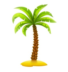 Coconut palm tree on sand vector image